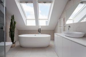 roof window skylights