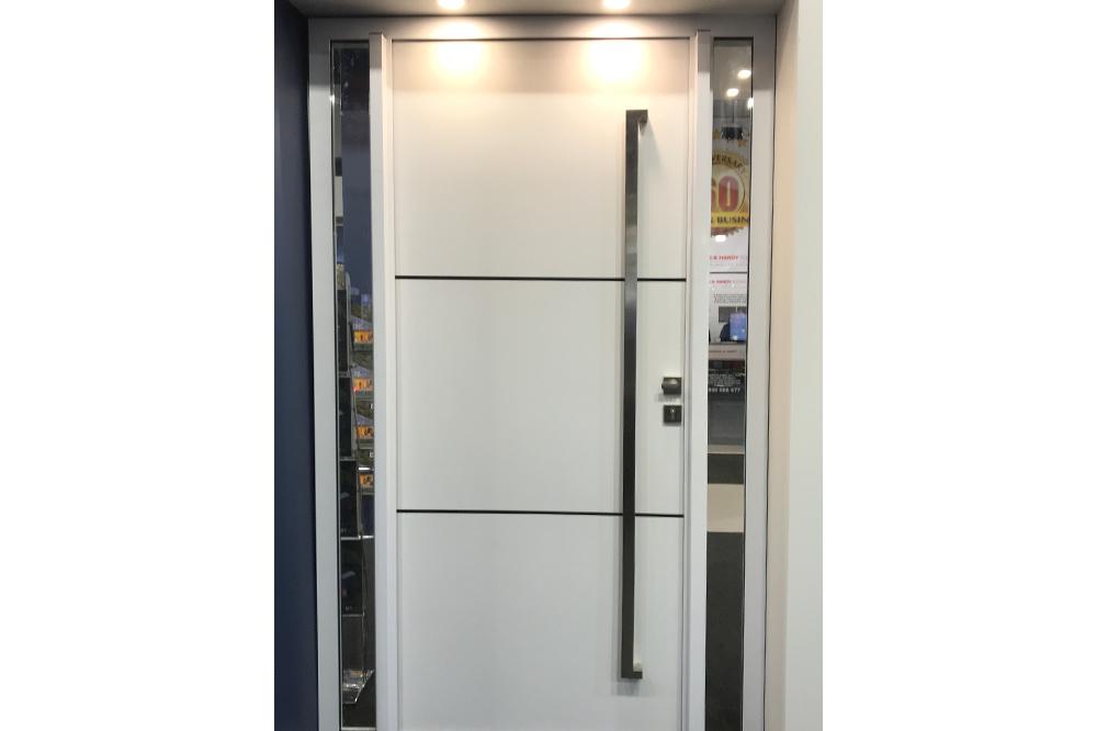 Plasma panel door